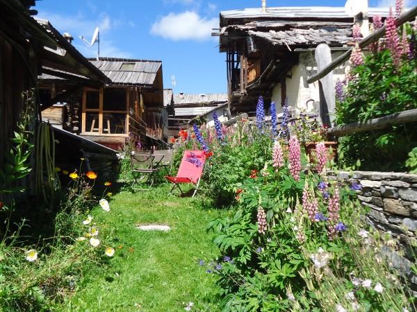 Le jardin à l'arrière du chalet