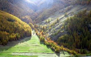 lumieres automne