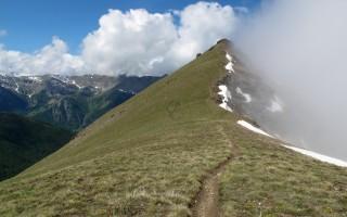gardiole de l alp debut juin